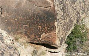 化石の森 アリゾナ州