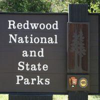 レッドウッド国立公園及びカリフォルニア州立公園