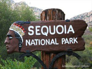 セコイア国立公園