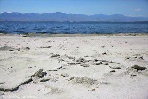 ソルトン湖 カリフォルニア州最大の湖