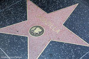 ハリウッド・ウォーク・オブ・フェーム
