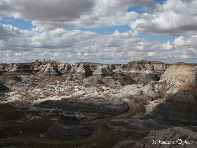 化石の森国立公園 アリゾナ州
